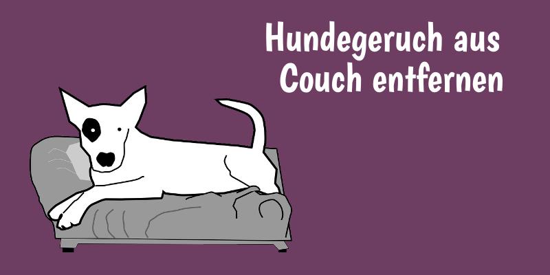 hundegeruch aus couch entfernen 5 hilfreiche methoden. Black Bedroom Furniture Sets. Home Design Ideas